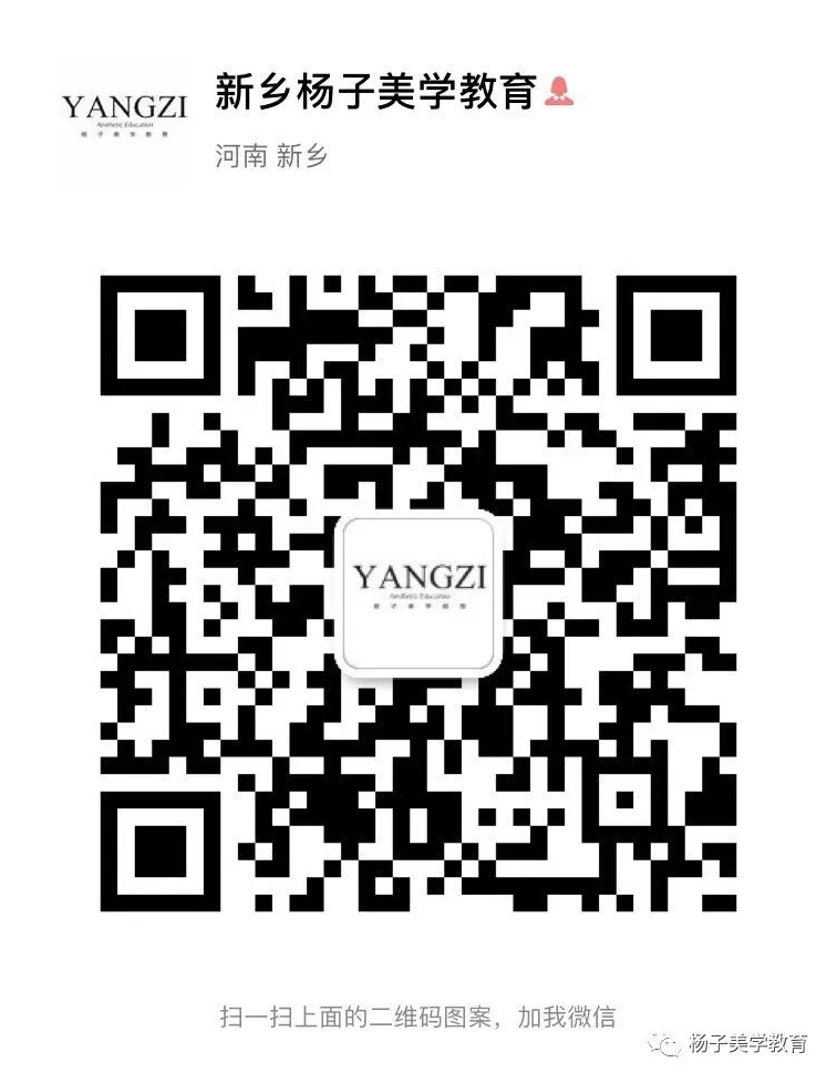新乡杨子美学教育